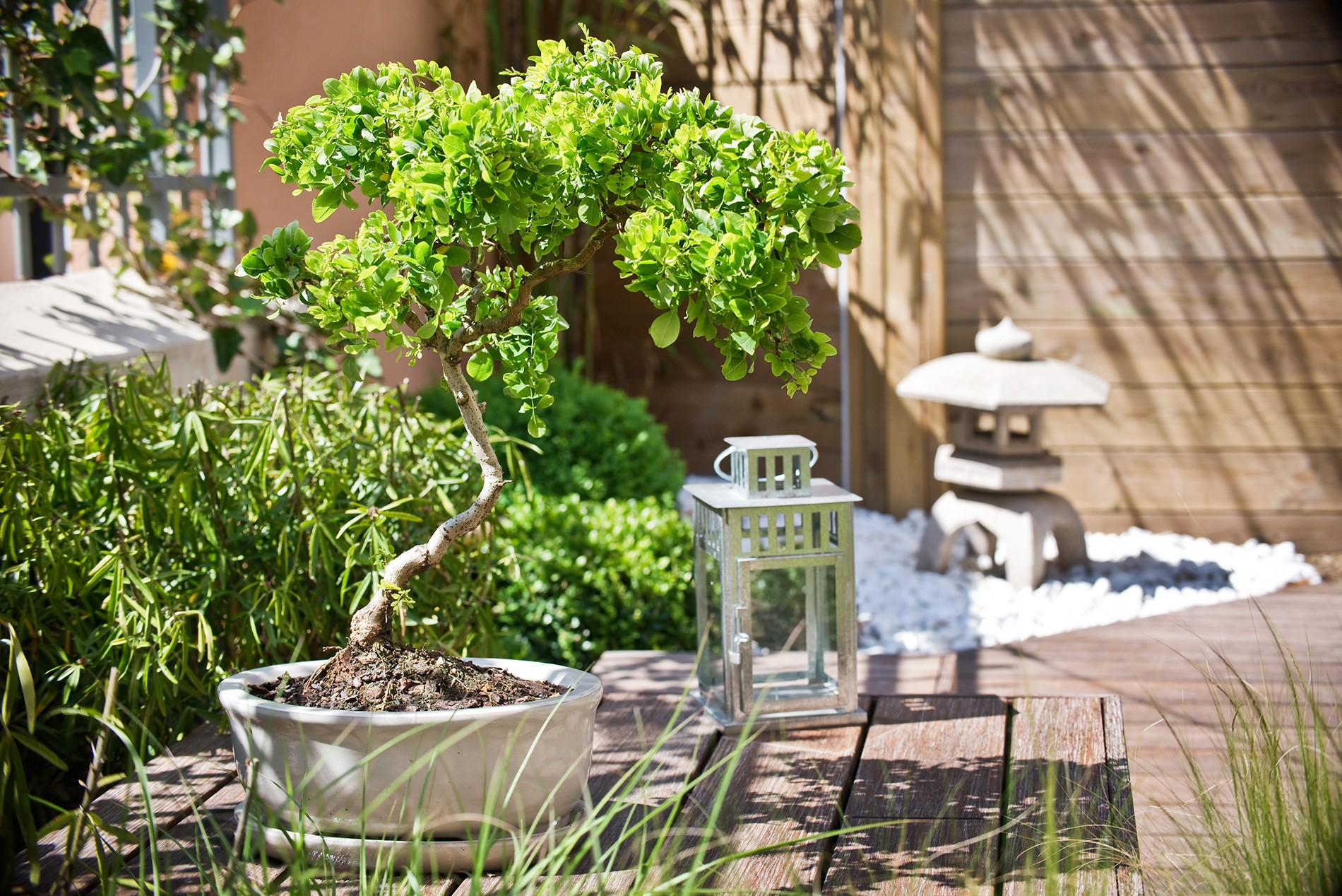 Cr er un jardin d 39 inspiration zen blog des artisans - Creer un jardin zen ...